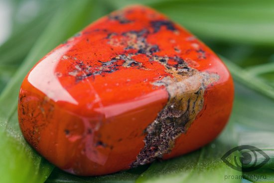 камни для родившихся под знаком овна