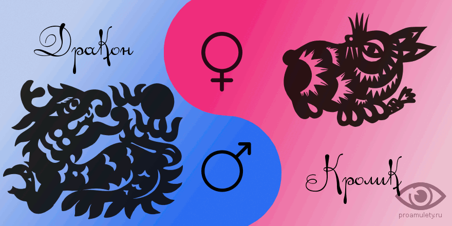 Женщина кот и мужчина дракон совместимость