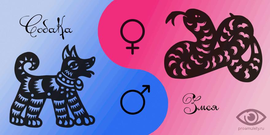 Лучшая пара для мужчины Змеи