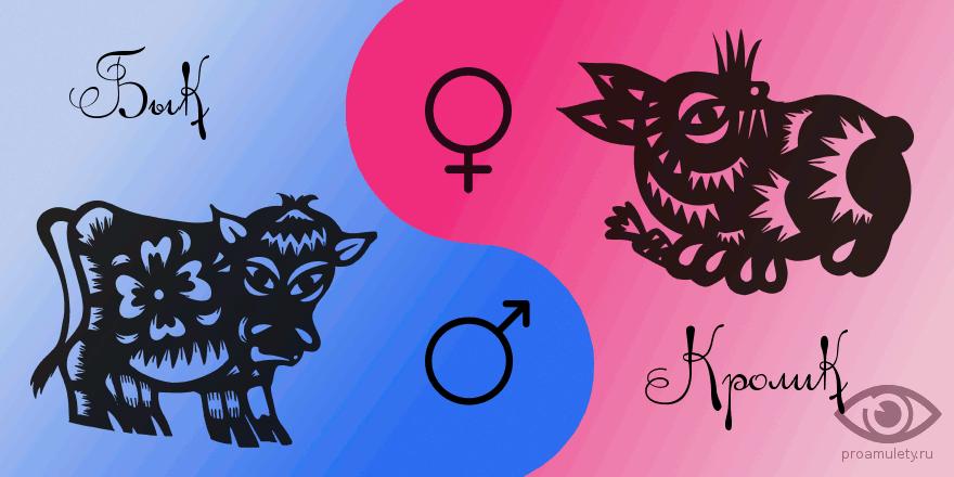 Мужчина кот женщина бык сексуальная совместимость