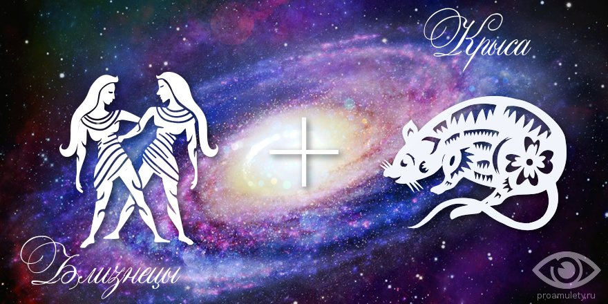 zodiak-bliznecy-krysa-muzhchina-zhenshhina-harakteristika