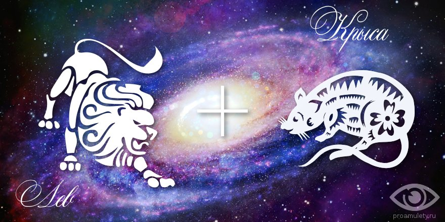 zodiak-lev-krysa-muzhchina-zhenshhina-harakteristika