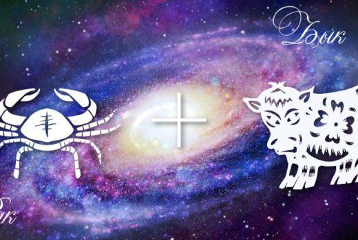 zodiak-rak-byk-muzhchina-zhenshhina-harakteristika