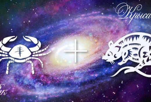 zodiak-rak-krysa-muzhchina-zhenshhina-harakteristika