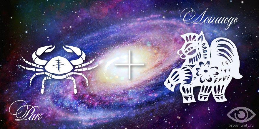 zodiak-rak-loshad-muzhchina-zhenshhina-harakteristika