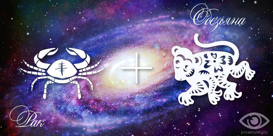 zodiak-rak-obezjana-muzhchina-zhenshhina-harakteristika
