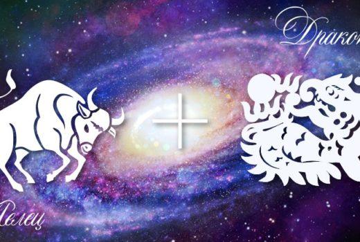 zodiak-telec-drakon-muzhchina-zhenshhina-harakteristika