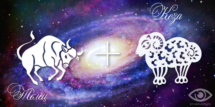 телец овца гороскоп