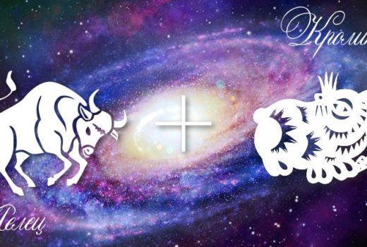 zodiak-telec-krolik-kot-muzhchina-zhenshhina-harakteristika