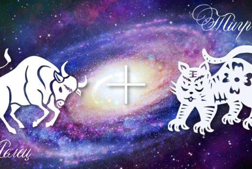zodiak-telec-tigr-muzhchina-zhenshhina-harakteristika