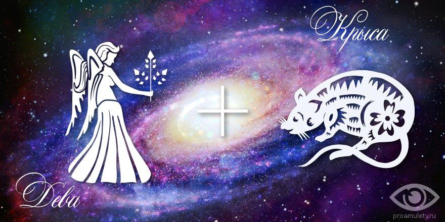 zodiak-deva-krysa-muzhchina-zhenshhina-harakteristika
