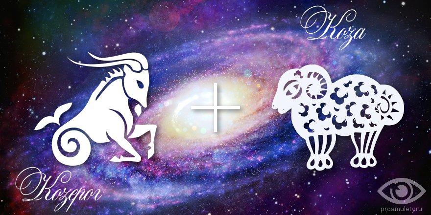 zodiak-kozerog-koza-ovca-muzhchina-zhenshhina-harakteristika