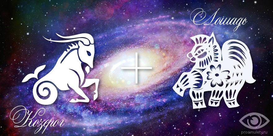 zodiak-kozerog-loshad-muzhchina-zhenshhina-harakteristika