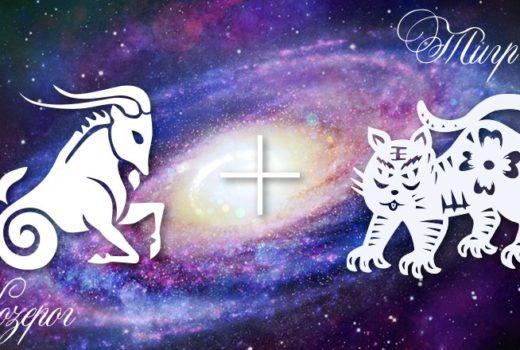 zodiak-kozerog-tigr-muzhchina-zhenshhina-harakteristika