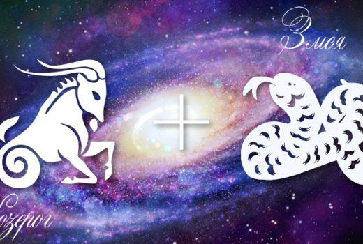 zodiak-kozerog-zmeja-muzhchina-zhenshhina-harakteristika