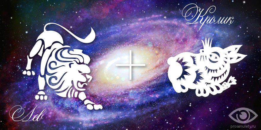 кот лев мужчина гороскоп на