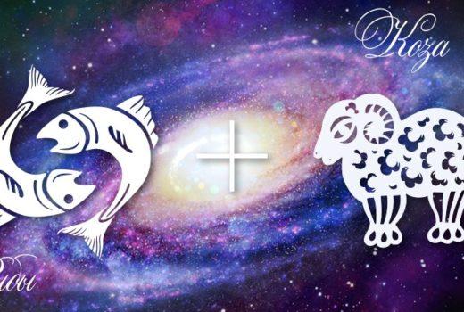 zodiak-ryby-koza-muzhchina-zhenshhina-harakteristika