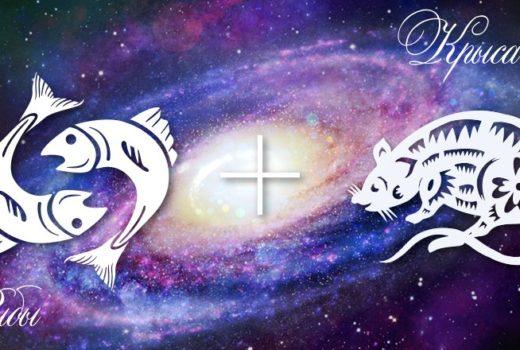 zodiak-ryby-krysa-muzhchina-zhenshhina-harakteristika