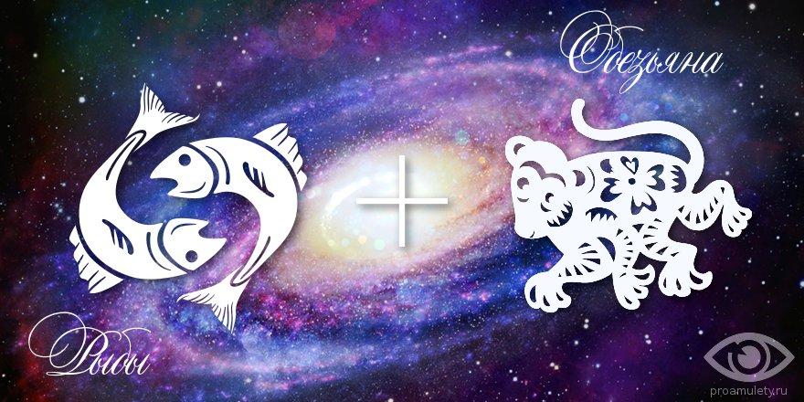 zodiak-ryby-obezjana-muzhchina-zhenshhina-harakteristika