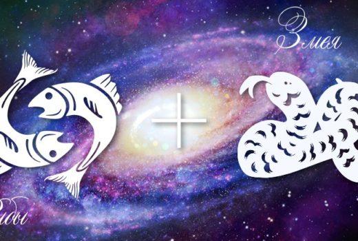 zodiak-ryby-zmeja-muzhchina-zhenshhina-harakteristika
