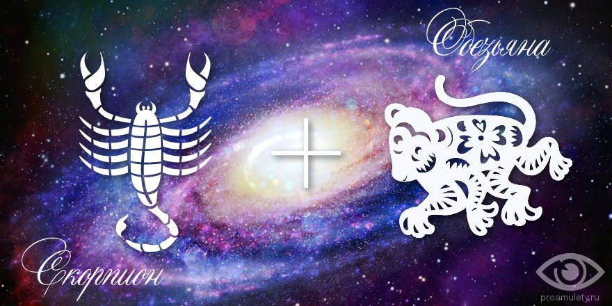 zodiak-skorpion-obezjana-muzhchina-zhenshhina-harakteristika