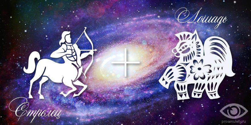 zodiak-strelec-loshad-muzhchina-zhenshchina-harakteristika
