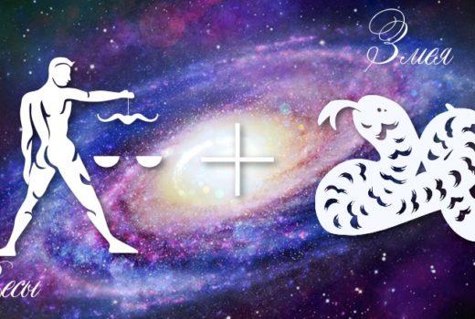zodiak-vesy-zmeja-muzhchina-zhenshhina-harakteristika