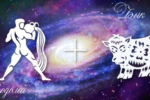 zodiak-vodolej-byk-muzhchina-zhenshhina-harakteristika