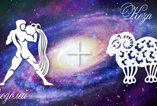 zodiak-vodolej-koza-ovca-muzhchina-zhenshhina-harakteristika