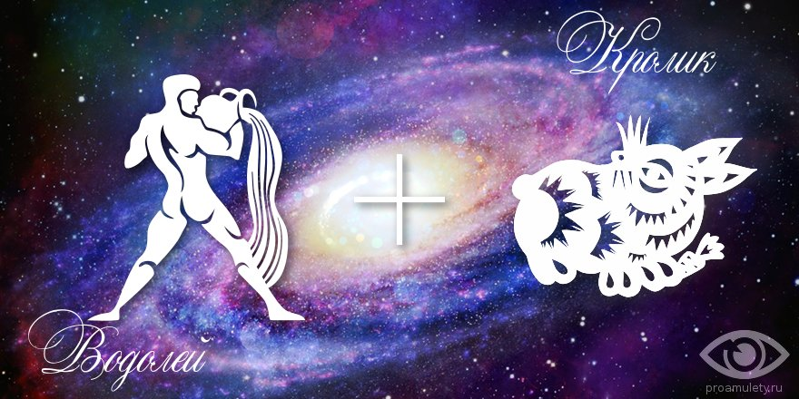 zodiak-vodolej-krolik-kot-muzhchina-zhenshhina-harakteristika