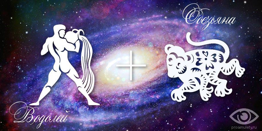 zodiak-vodolej-obezjana-muzhchina-zhenshhina-harakteristika