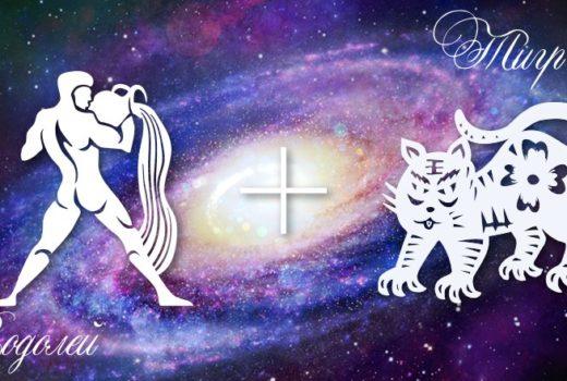 zodiak-vodolej-tigr-muzhchina-zhenshhina-harakteristika