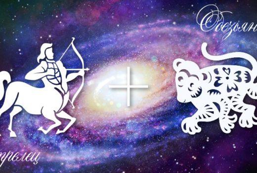 zodiak-strelec-obezjana-muzhchina-zhenshhina-harakteristika