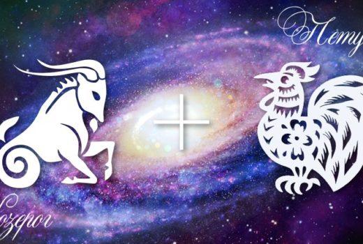 zodiak-kozerog-petuh-muzhchina-zhenshchina-harakteristika