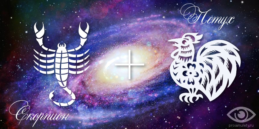 zodiak-skorpion-petuh-muzhchina-zhenshchina-harakteristika