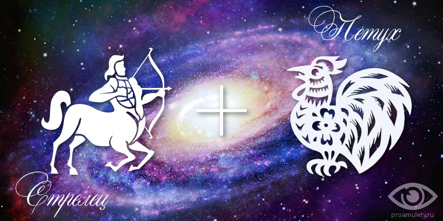 zodiak-strelec-petuh-muzhchina-zhenshchina-harakteristika