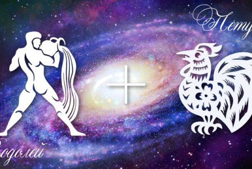 zodiak-vodolej-petuh-muzhchina-zhenshchina-harakteristika