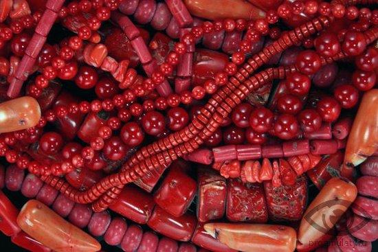 korall-kamen-lechebnye-svojstva-busy-poroshok