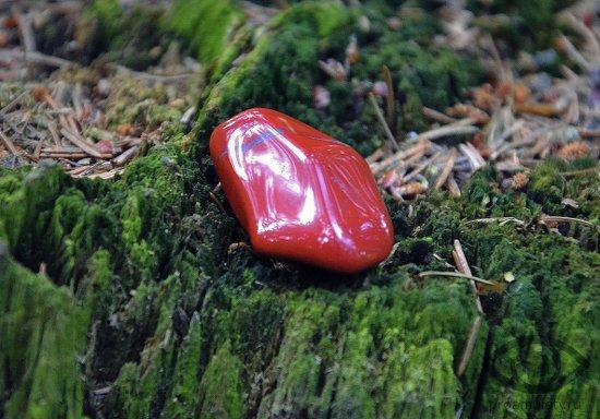 krasnaja-jashma-kamen-pobeditelej-svojstva