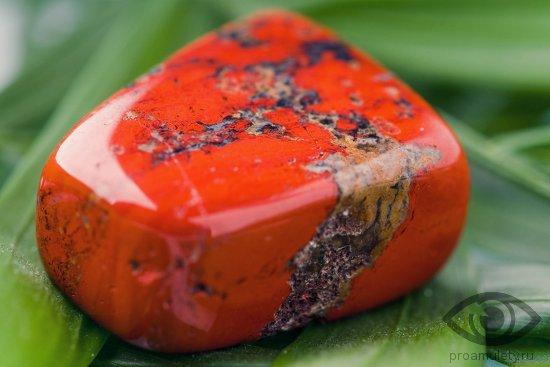 jashma-kamen-svojstva-vidy-raznovidnosti