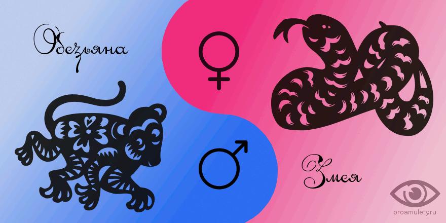 Змея и обезьяна в сексе