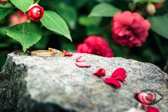 obruchalnye-kolca-na-kamne-v-lepestkah-roz