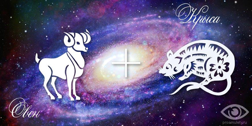 zodiak-oven-krysa-muzhchina-zhenshhina-harakteristika