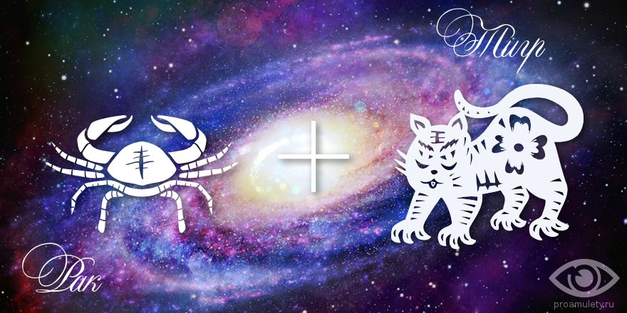 zodiak-rak-tigr-muzhchina-zhenshhina-harakteristika