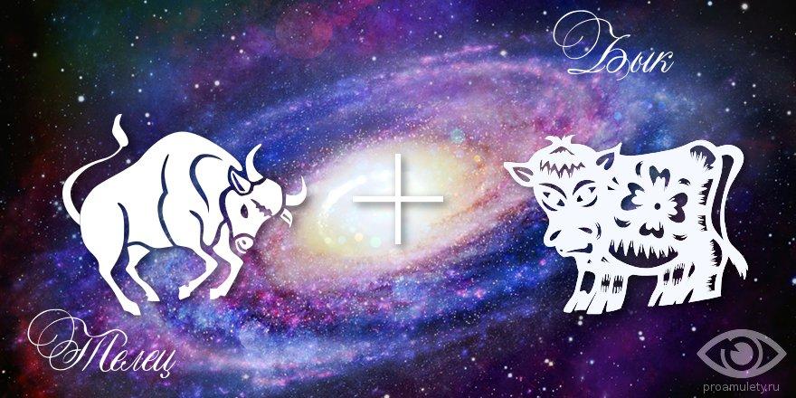 zodiak-telec-byk-muzhchina-zhenshhina-harakteristika