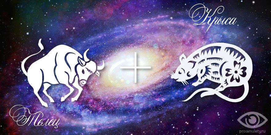 zodiak-telec-krysa-muzhchina-zhenshhina-harakteristika