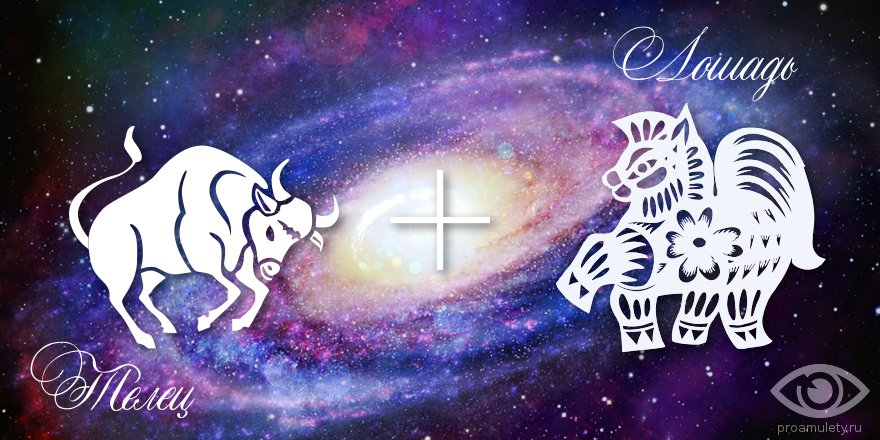 zodiak-telec-loshad-muzhchina-zhenshhina-harakteristika