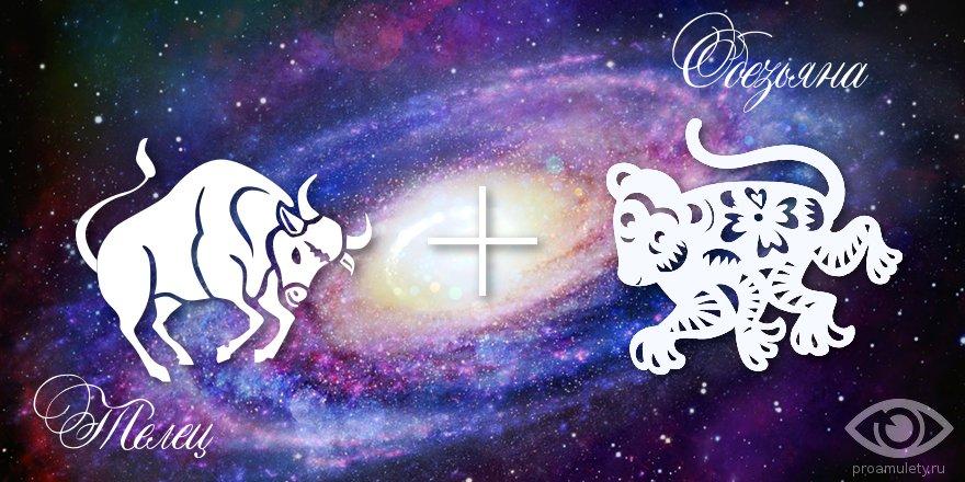 zodiak-telec-obezjana-muzhchina-zhenshhina-harakteristika