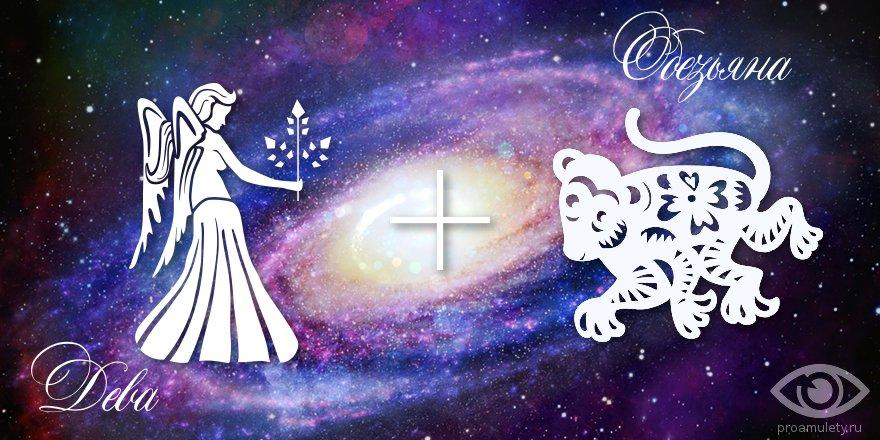 zodiak-deva-obezjana-muzhchina-zhenshhina-harakteristika