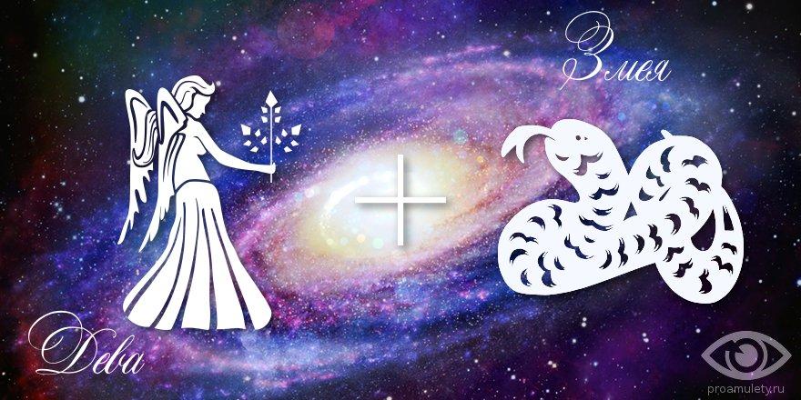 zodiak-deva-zmeja-muzhchina-zhenshhina-harakteristika
